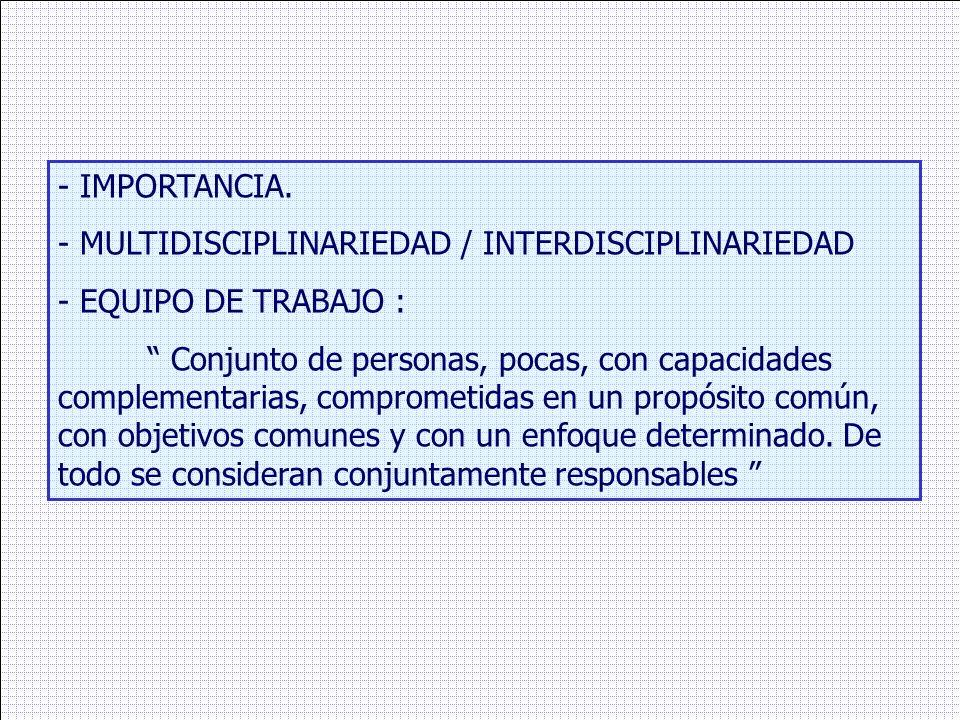 - IMPORTANCIA. - MULTIDISCIPLINARIEDAD / INTERDISCIPLINARIEDAD - EQUIPO DE TRABAJO : Conjunto de personas, pocas, con capacidades complementarias, com