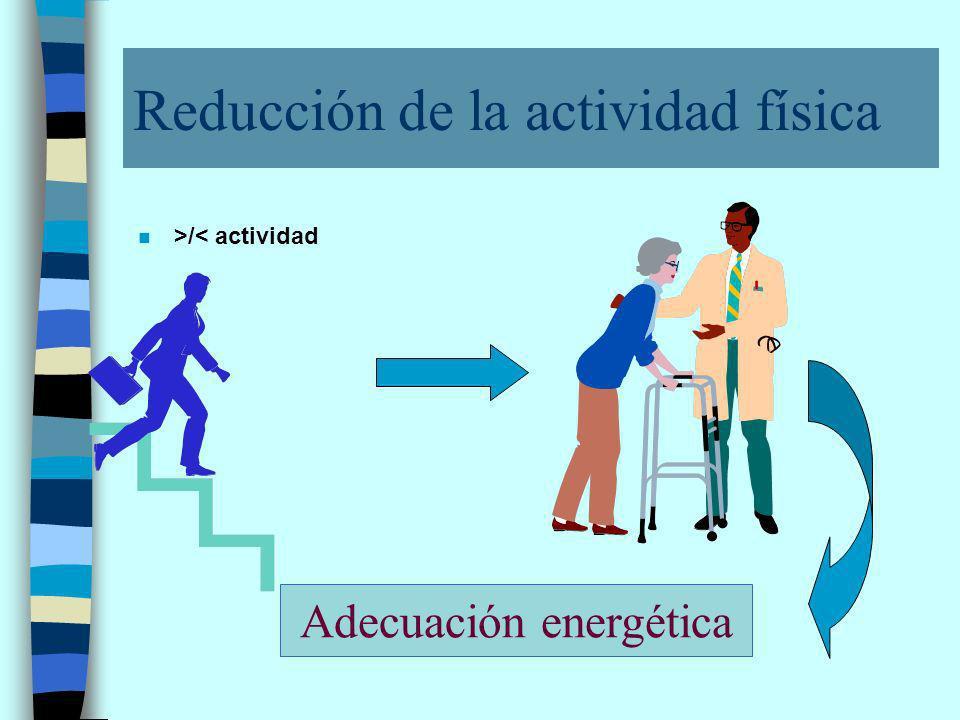 Reducción de la actividad física n >/< actividad Adecuación energética