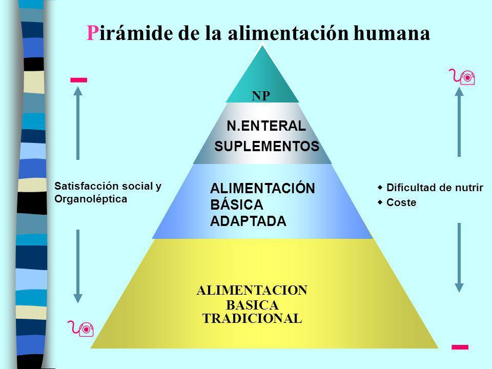 ALIMENTACION BASICA TRADICIONAL NP Satisfacción social y Organoléptica Pirámide de la alimentación humana Coste Dificultad de nutrir N.ENTERAL SUPLEMENTOS ALIMENTACIÓN BÁSICA ADAPTADA
