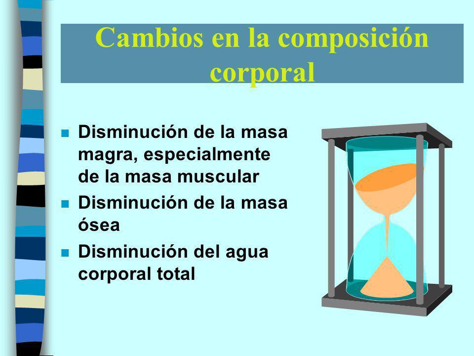 Cambios en la composición corporal n Disminución de la masa magra, especialmente de la masa muscular n Disminución de la masa ósea n Disminución del agua corporal total