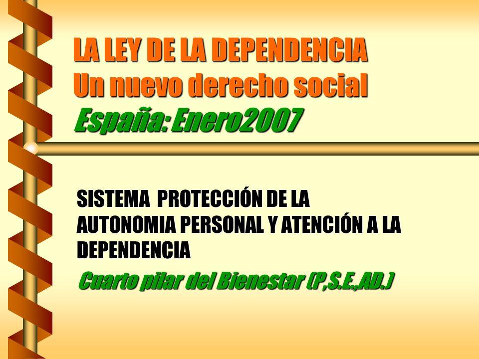 LA LEY DE LA DEPENDENCIA Un nuevo derecho social España: Enero2007 SISTEMA PROTECCIÓN DE LA AUTONOMIA PERSONAL Y ATENCIÓN A LA DEPENDENCIA Cuarto pila