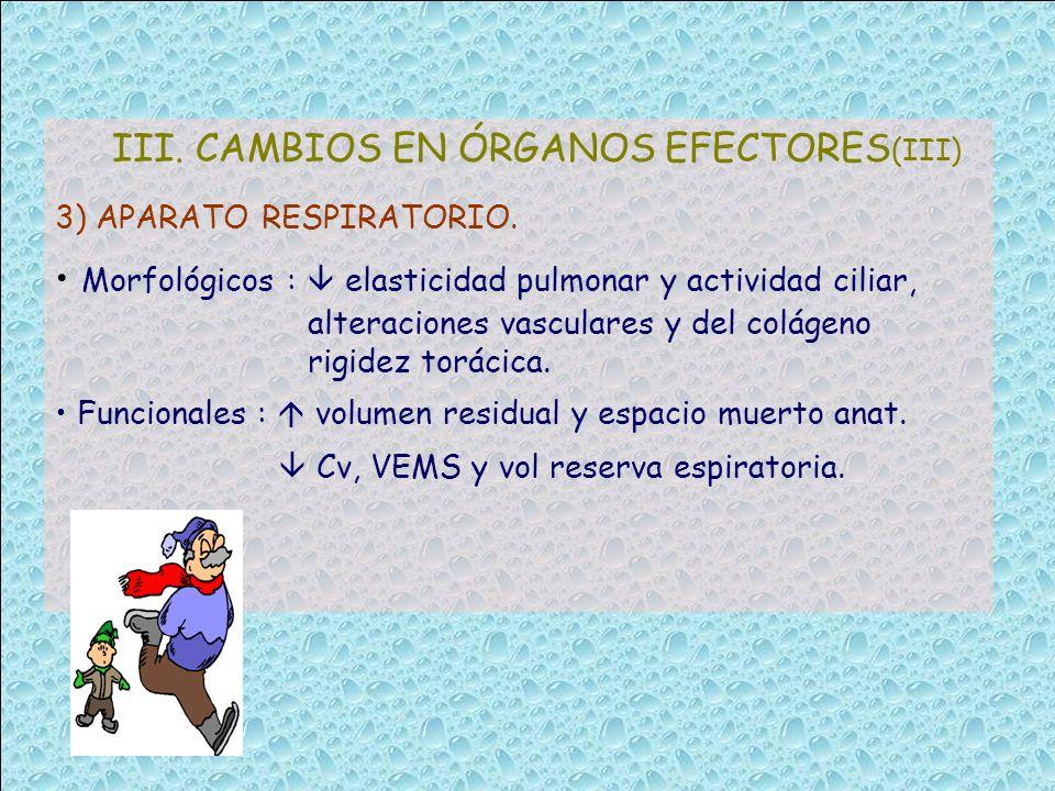 III. CAMBIOS EN ÓRGANOS EFECTORES (III) 3) APARATO RESPIRATORIO. Morfológicos : elasticidad pulmonar y actividad ciliar, alteraciones vasculares y del