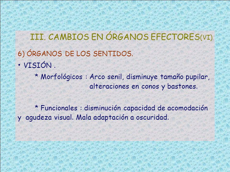 III. CAMBIOS EN ÓRGANOS EFECTORES (VI) 6) ÓRGANOS DE LOS SENTIDOS. VISIÓN. * Morfológicos : Arco senil, disminuye tamaño pupilar, alteraciones en cono