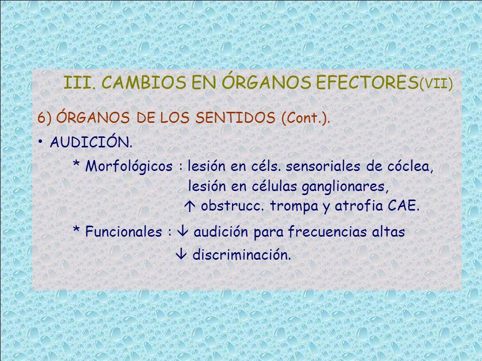 III. CAMBIOS EN ÓRGANOS EFECTORES (VII) 6) ÓRGANOS DE LOS SENTIDOS (Cont.). AUDICIÓN. * Morfológicos : lesión en céls. sensoriales de cóclea, lesión e