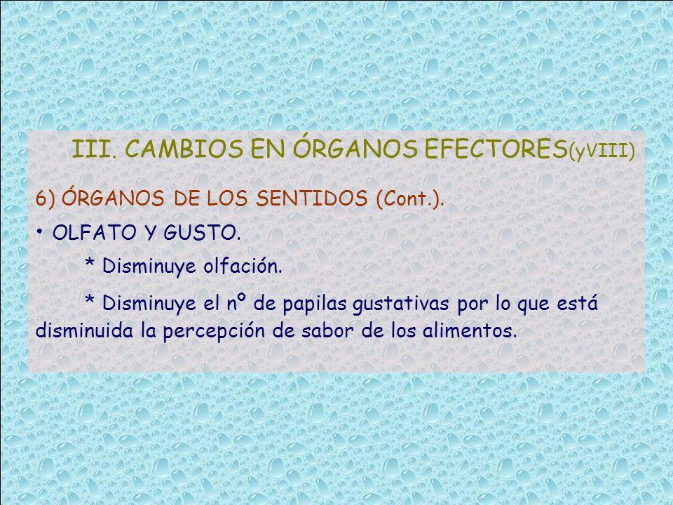 III. CAMBIOS EN ÓRGANOS EFECTORES (yVIII) 6) ÓRGANOS DE LOS SENTIDOS (Cont.). OLFATO Y GUSTO. * Disminuye olfación. * Disminuye el nº de papilas gusta
