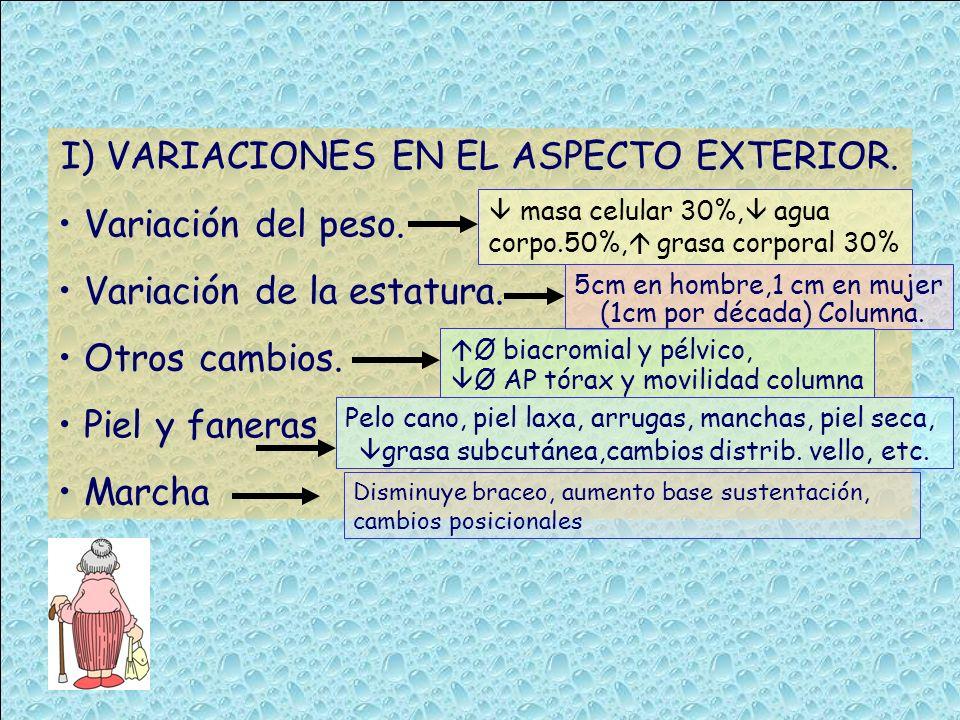 I) VARIACIONES EN EL ASPECTO EXTERIOR. Variación del peso. Variación de la estatura. Otros cambios. Piel y faneras Marcha masa celular 30%, agua corpo