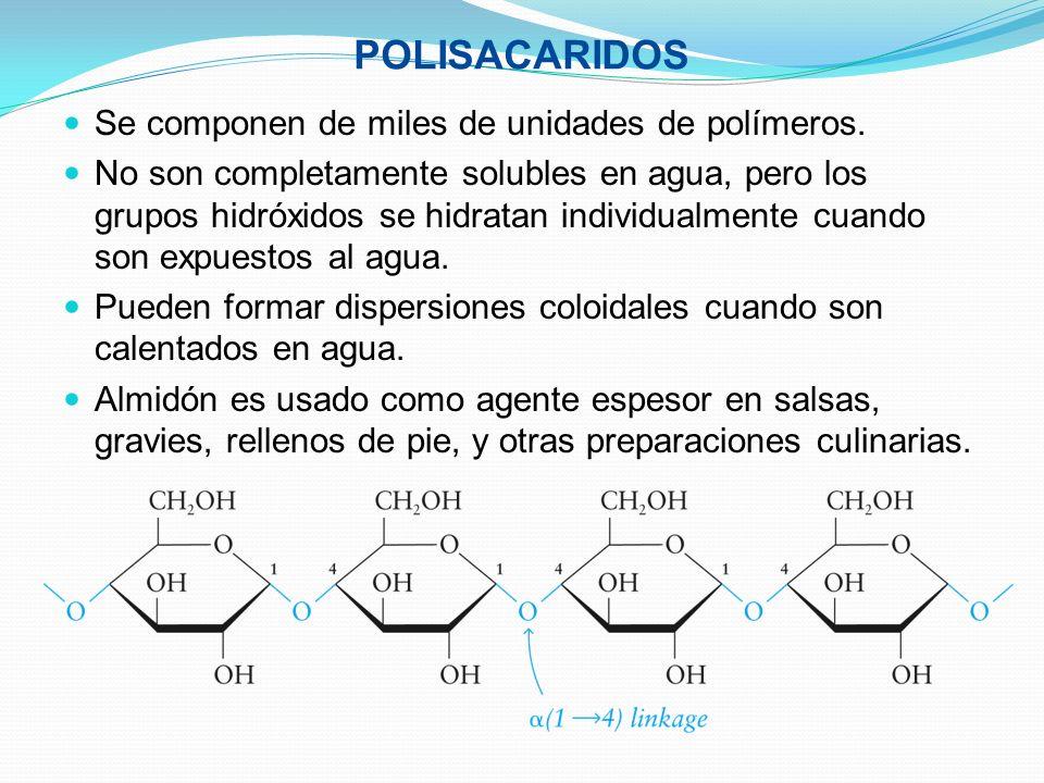 POLISACARIDOS Se componen de miles de unidades de polímeros. No son completamente solubles en agua, pero los grupos hidróxidos se hidratan individualm