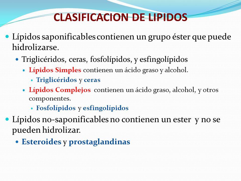 CLASIFICACION DE LIPIDOS Lípidos saponificables contienen un grupo éster que puede hidrolizarse. Triglicéridos, ceras, fosfolípidos, y esfingolípidos