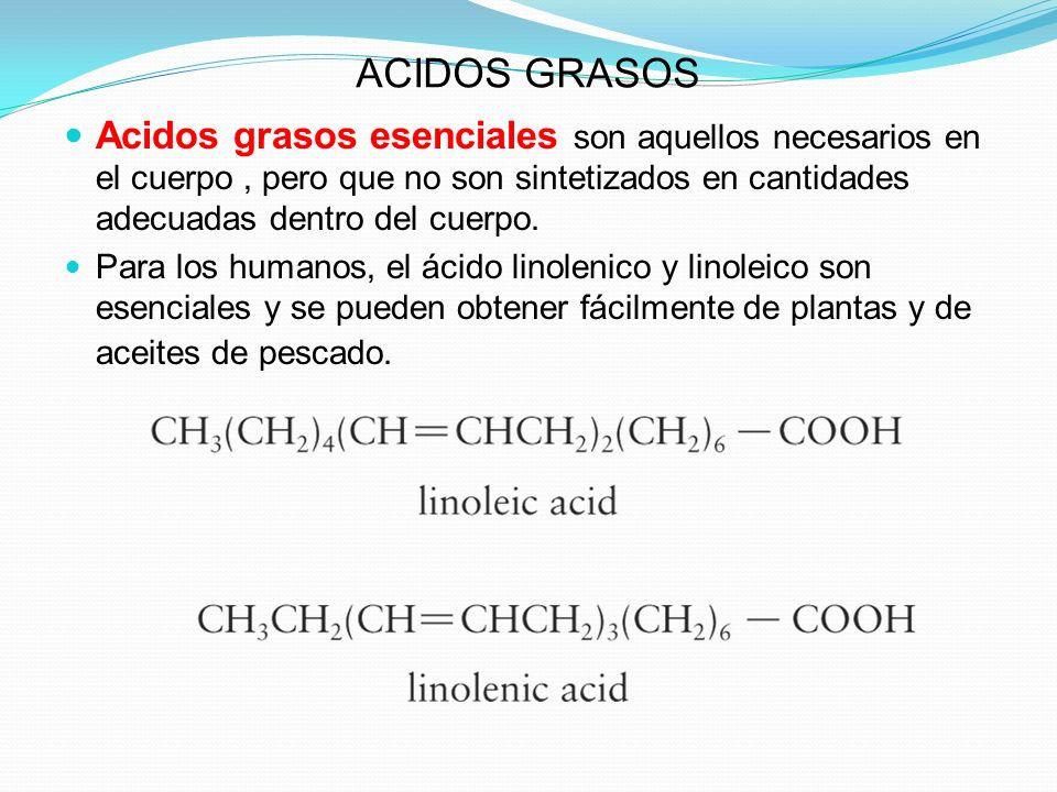 ACIDOS GRASOS Acidos grasos esenciales son aquellos necesarios en el cuerpo, pero que no son sintetizados en cantidades adecuadas dentro del cuerpo. P