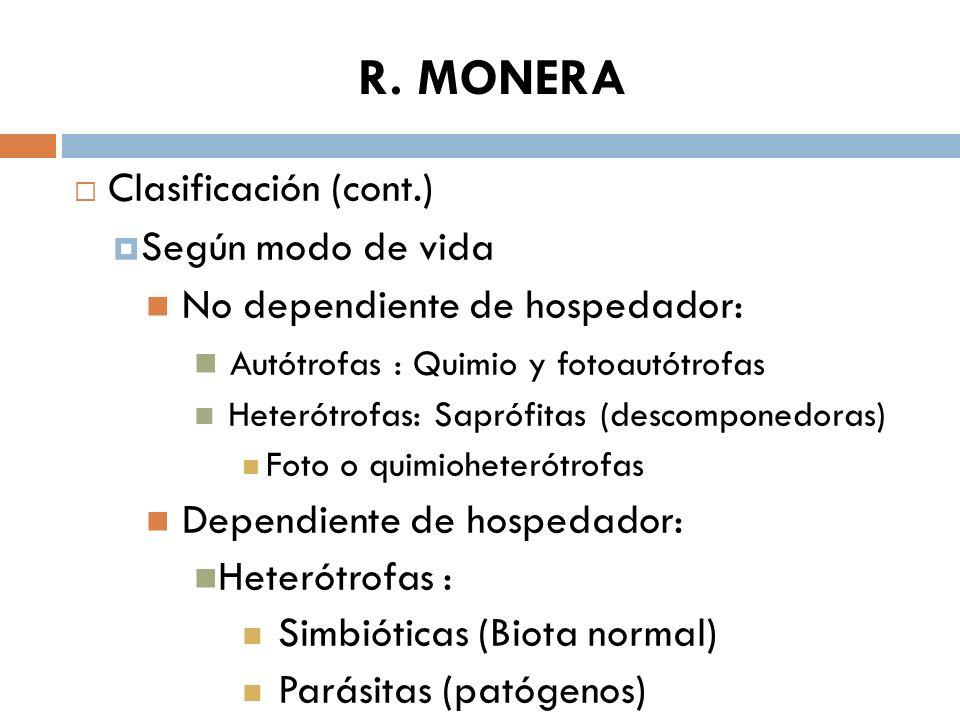 R. MONERA Clasificación (cont.) Según modo de vida No dependiente de hospedador: Autótrofas : Quimio y fotoautótrofas Heterótrofas: Saprófitas (descom