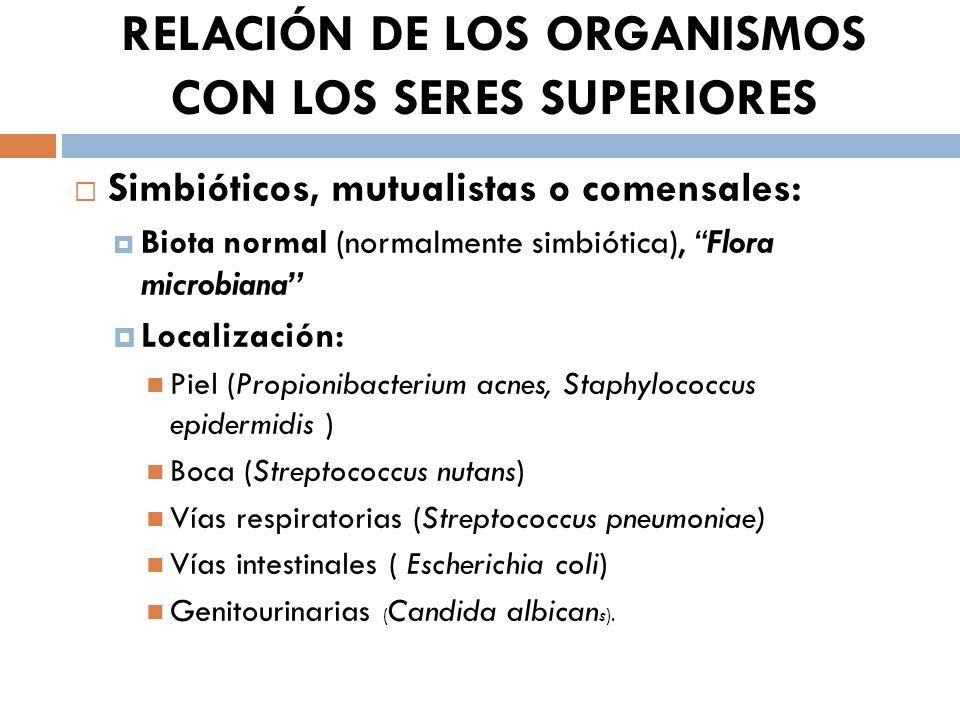 RELACIÓN DE LOS ORGANISMOS CON LOS SERES SUPERIORES Simbióticos, mutualistas o comensales: Biota normal (normalmente simbiótica), Flora microbiana Loc