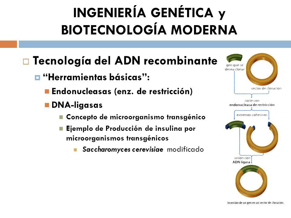 INGENIERÍA GENÉTICA y BIOTECNOLOGÍA MODERNA Tecnología del ADN recombinante Herramientas básicas: Endonucleasas (enz. de restricción) DNA-ligasas Conc