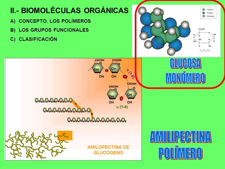 II.- BIOMOLÉCULAS ORGÁNICAS A)CONCEPTO. LOS POLÍMEROS B)LOS GRUPOS FUNCIONALES C)CLASIFICACIÓN