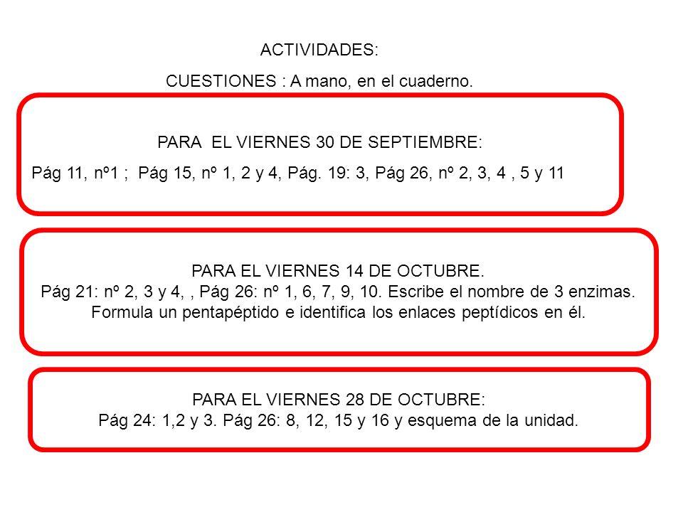 ACTIVIDADES: CUESTIONES : A mano, en el cuaderno. PARA EL VIERNES 30 DE SEPTIEMBRE: Pág 11, nº1 ; Pág 15, nº 1, 2 y 4, Pág. 19: 3, Pág 26, nº 2, 3, 4,