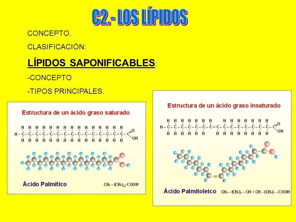 CONCEPTO. CLASIFICACIÓN: LÍPIDOS SAPONIFICABLES : -CONCEPTO -TIPOS PRINCIPALES.