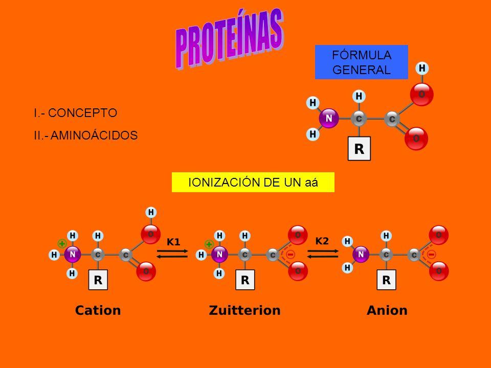 I.- CONCEPTO II.- AMINOÁCIDOS FÓRMULA GENERAL IONIZACIÓN DE UN aá
