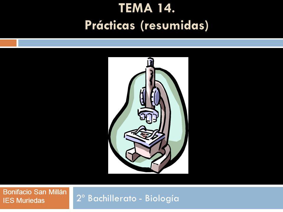 TEMA 14. Prácticas (resumidas) 2º Bachillerato - Biología Bonifacio San Millán IES Muriedas