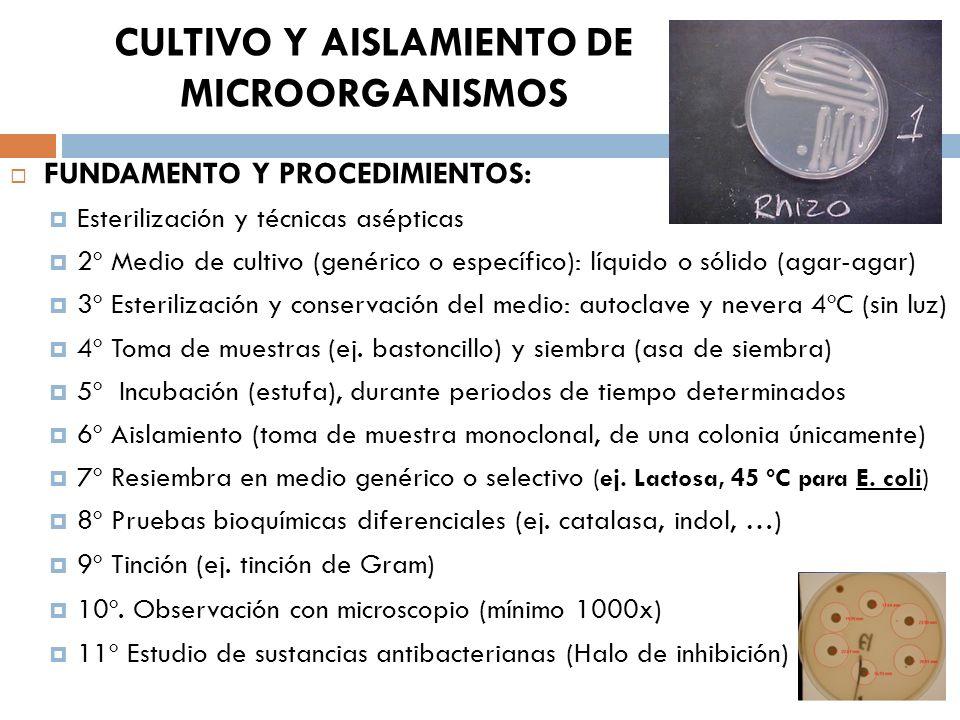 CULTIVO Y AISLAMIENTO DE MICROORGANISMOS FUNDAMENTO Y PROCEDIMIENTOS: Esterilización y técnicas asépticas 2º Medio de cultivo (genérico o específico):