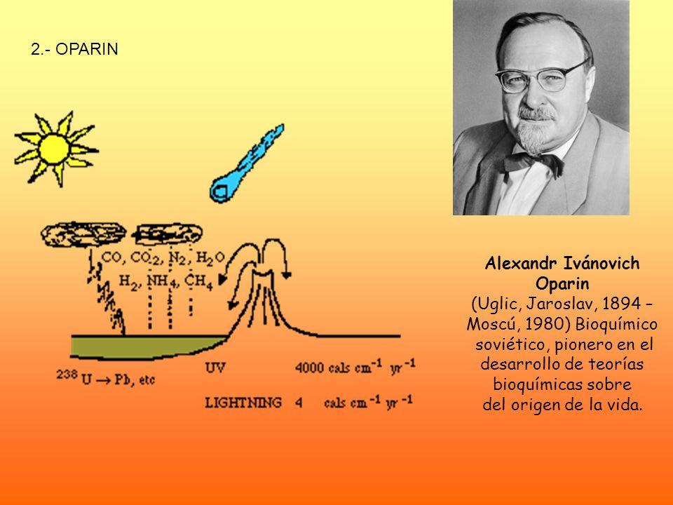 2.- OPARIN Alexandr Ivánovich Oparin (Uglic, Jaroslav, 1894 – Moscú, 1980) Bioquímico soviético, pionero en el desarrollo de teorías bioquímicas sobre