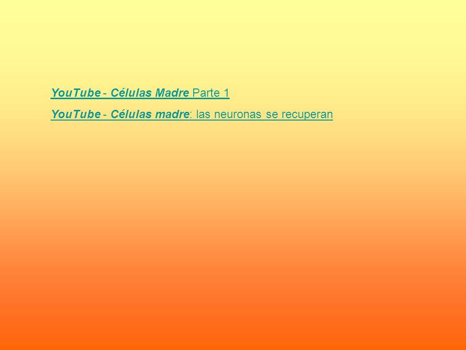YouTube - Células Madre Parte 1 YouTube - Células madre: las neuronas se recuperan
