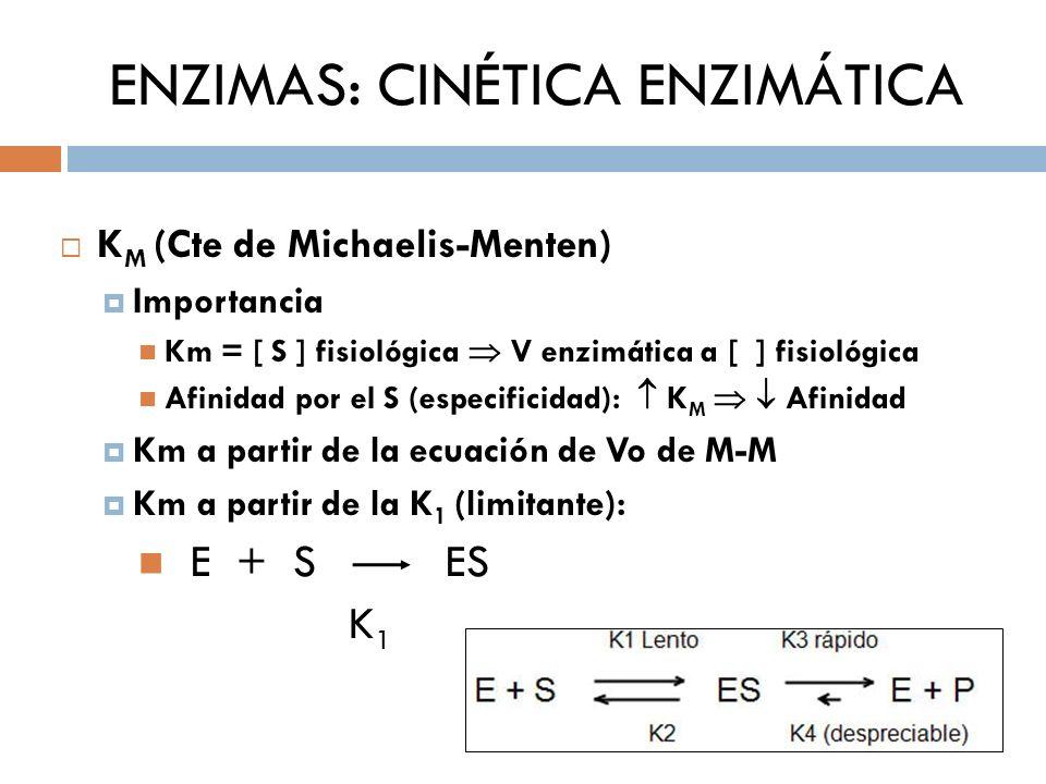 ENZIMAS: CINÉTICA ENZIMÁTICA K M (Cte de Michaelis-Menten) Importancia Km = [ S ] fisiológica V enzimática a [ ] fisiológica Afinidad por el S (especi