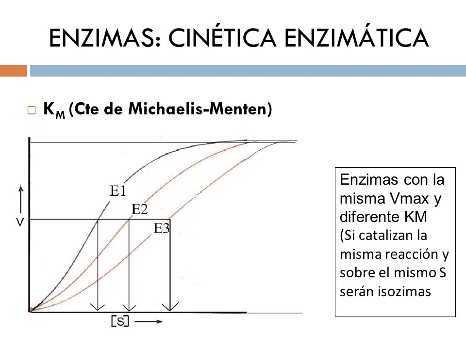 ENZIMAS: CINÉTICA ENZIMÁTICA K M (Cte de Michaelis-Menten) Enzimas con la misma Vmax y diferente KM (Si catalizan la misma reacción y sobre el mismo S