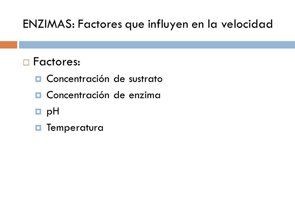 ENZIMAS: Factores que influyen en la velocidad Factores: Concentración de sustrato Concentración de enzima pH Temperatura
