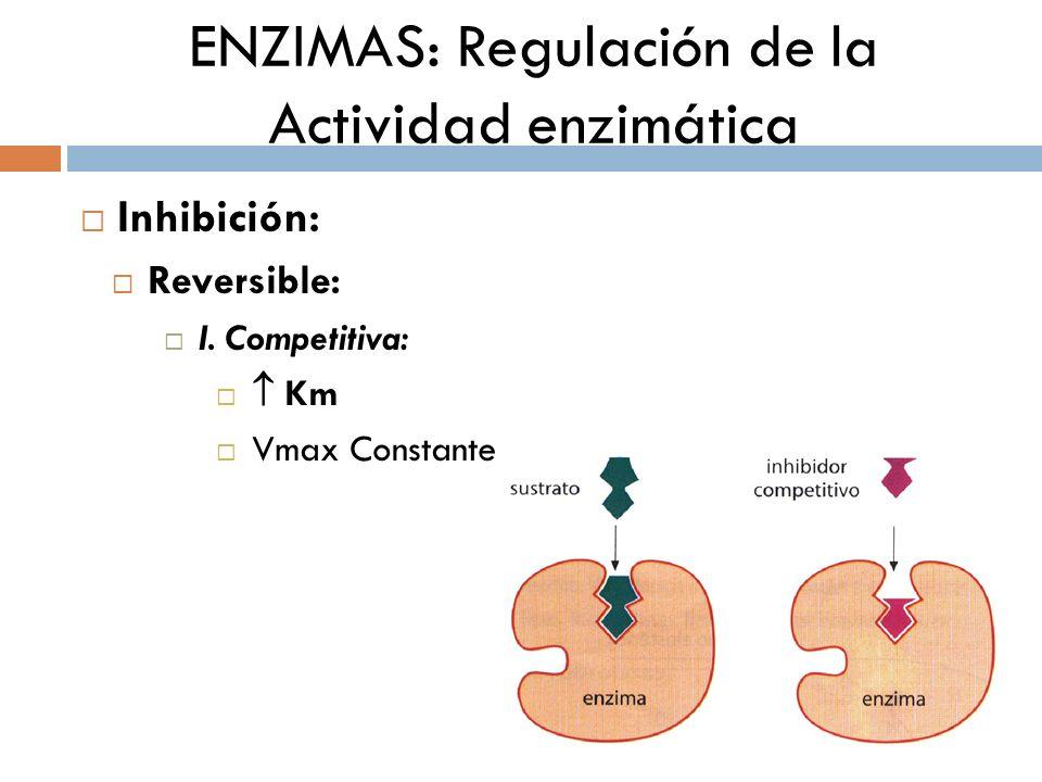 ENZIMAS: Regulación de la Actividad enzimática Inhibición: Reversible: I. Competitiva: Km Vmax Constante
