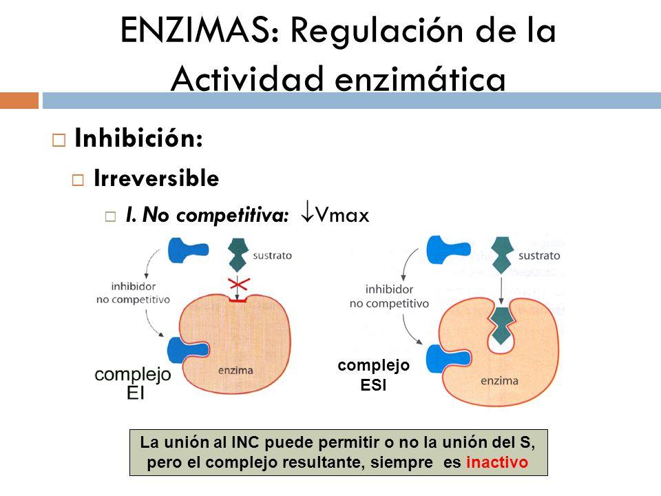 ENZIMAS: Regulación de la Actividad enzimática Inhibición: Irreversible I. No competitiva: Vmax complejo ESI La unión al INC puede permitir o no la un