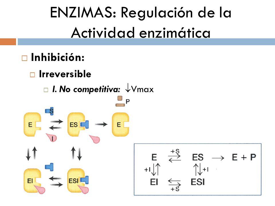 ENZIMAS: Regulación de la Actividad enzimática Inhibición no competitiva: La Vmax disminuye La Km constante