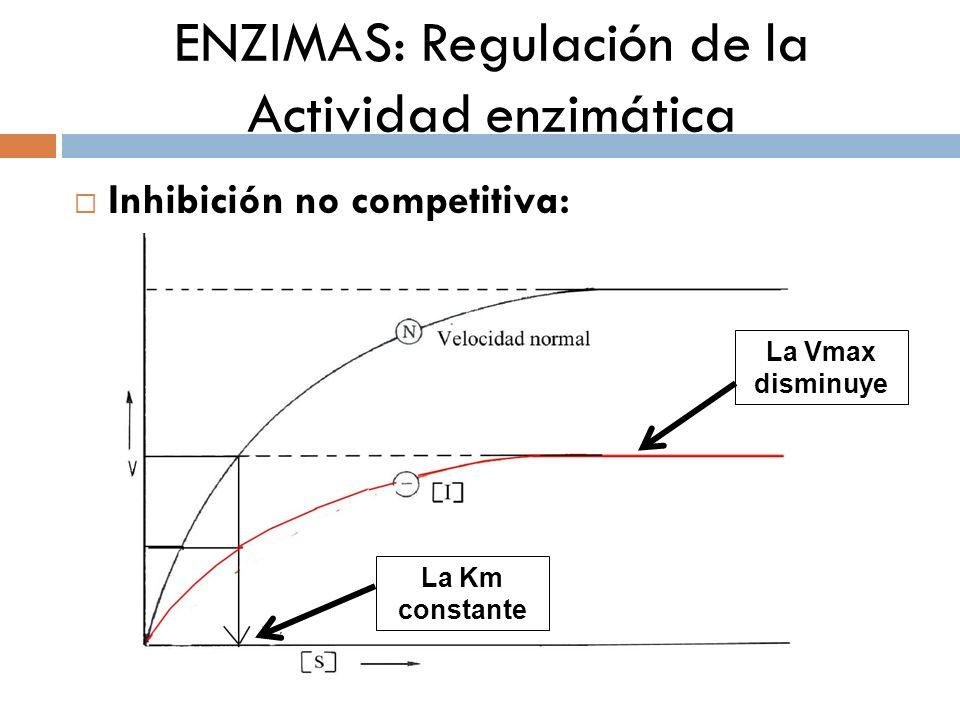 ENZIMAS: Regulación de la Actividad enzimática Inhibición no competitiva: ¿Por qué es irreversible.