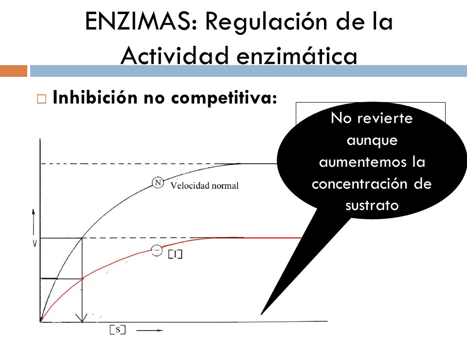 ENZIMAS: Regulación de la Actividad enzimática Inhibición no competitiva: ¿Por qué es irreversible? No revierte aunque aumentemos la concentración de
