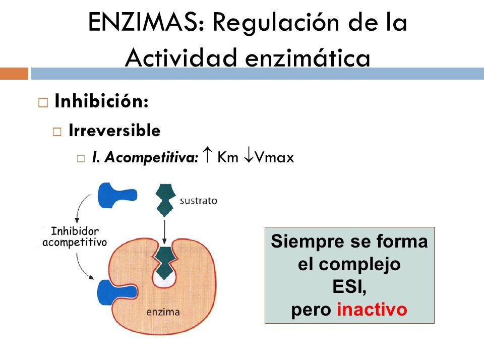 ENZIMAS: Regulación de la Actividad enzimática Inhibición: Irreversible I. Acompetitiva: Km Vmax Siempre se forma el complejo ESI, pero inactivo