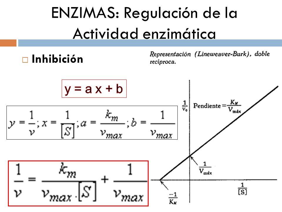 ENZIMAS: Regulación de la Actividad enzimática Inhibición IC: Vmax cte Km INC: Vmax Km cte IA: Vmax Km