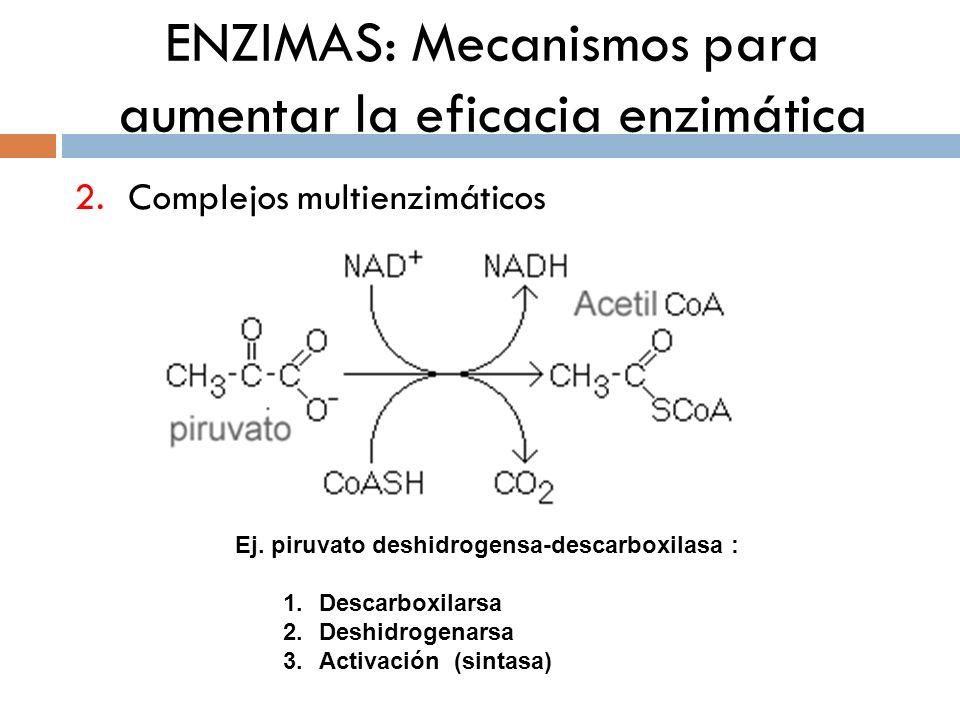 ENZIMAS: Mecanismos para aumentar la eficacia enzimática 2.Complejos multienzimáticos Ej. piruvato deshidrogensa-descarboxilasa : 1.Descarboxilarsa 2.