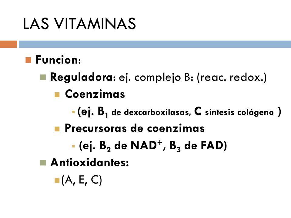 LAS VITAMINAS Funcion: Reguladora: ej. complejo B: (reac. redox.) Coenzimas (ej. B 1 de dexcarboxilasas, C síntesis colágeno ) Precursoras de coenzima