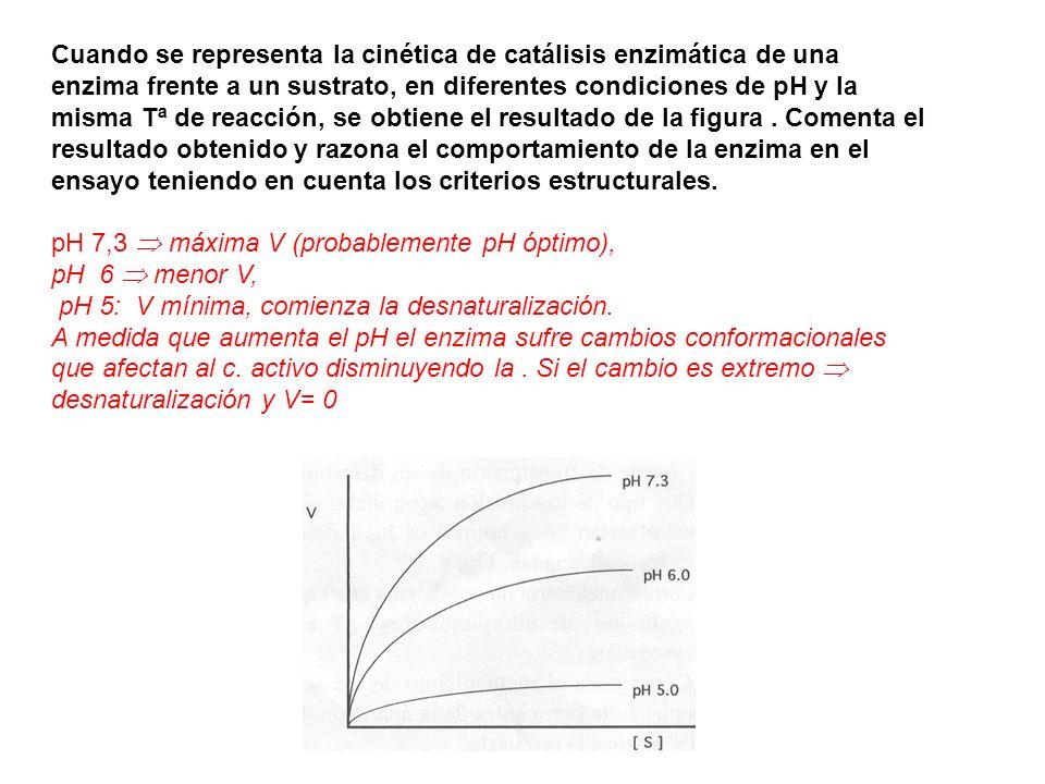 Cuando se representa la cinética de catálisis enzimática de una enzima frente a un sustrato, en diferentes condiciones de pH y la misma Tª de reacción