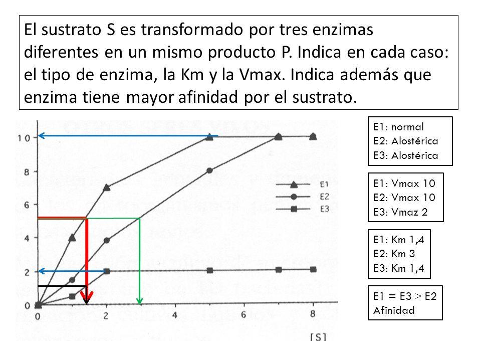 El sustrato S es transformado por tres enzimas diferentes en un mismo producto P. Indica en cada caso: el tipo de enzima, la Km y la Vmax. Indica adem
