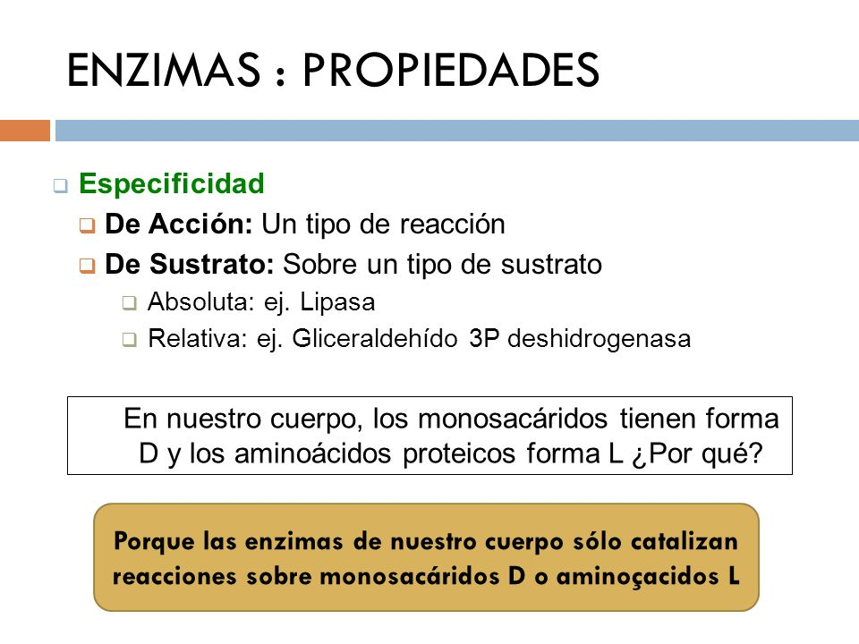 ENZIMAS : PROPIEDADES Especificidad De Acción: Un tipo de reacción De Sustrato: Sobre un tipo de sustrato Absoluta: ej. Lipasa Relativa: ej. Glicerald