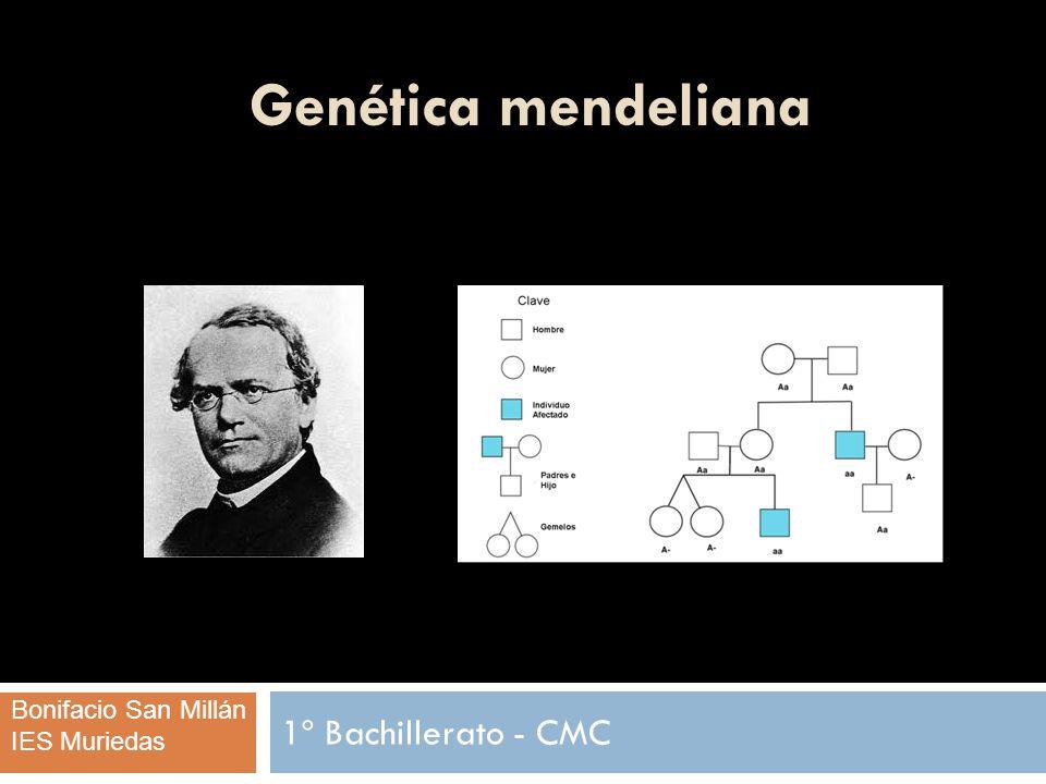 Genética mendeliana ÍNDICE Intruducción.