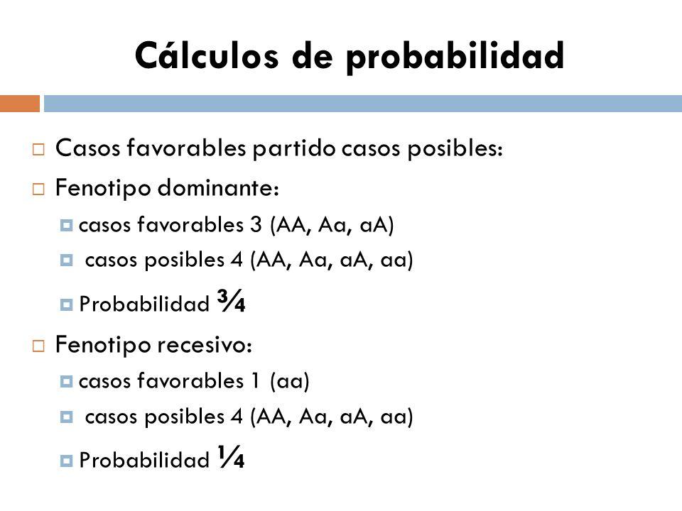 Cálculos de probabilidad Casos favorables partido casos posibles: Fenotipo dominante: casos favorables 3 (AA, Aa, aA) casos posibles 4 (AA, Aa, aA, aa) Probabilidad ¾ Fenotipo recesivo: casos favorables 1 (aa) casos posibles 4 (AA, Aa, aA, aa) Probabilidad ¼