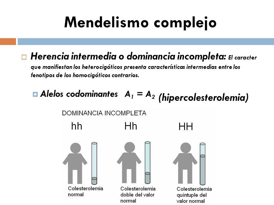 Mendelismo complejo Herencia codominante: El caracter que manifiestan los heterocigóticos presenta simultaneamente los fenotipos de los homocigóticos contrarios.