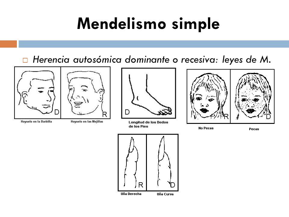 TEST DE REPASO TEMA Genética Mendeliana