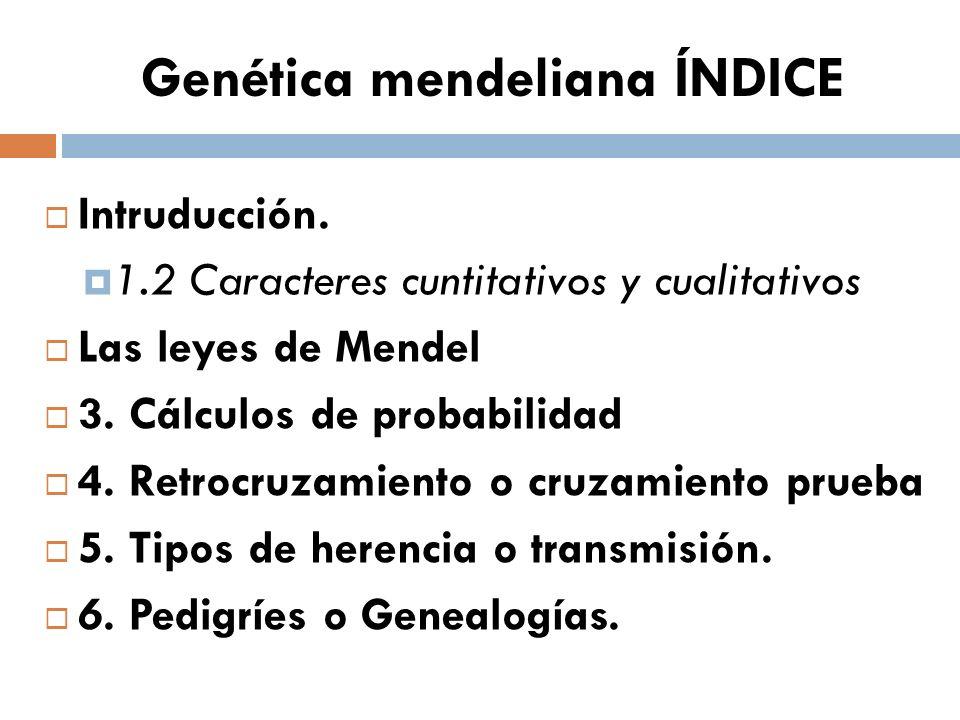 Genética mendeliana ÍNDICE Intruducción. 1.2 Caracteres cuntitativos y cualitativos Las leyes de Mendel 3. Cálculos de probabilidad 4. Retrocruzamient
