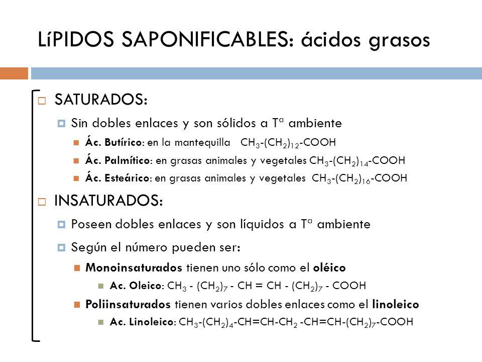 LíPIDOS SAPONIFICABLES: ácidos grasos SATURADOS : Sin dobles enlaces y son sólidos a Tª ambiente Ác. Butírico: en la mantequilla CH 3 -(CH 2 ) 12 -COO
