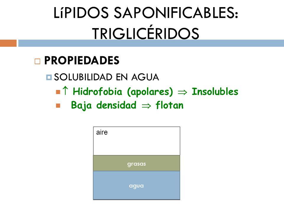 LíPIDOS SAPONIFICABLES: TRIGLICÉRIDOS PROPIEDADES SOLUBILIDAD EN AGUA Hidrofobia (apolares) Insolubles Baja densidad flotan aire grasas agua
