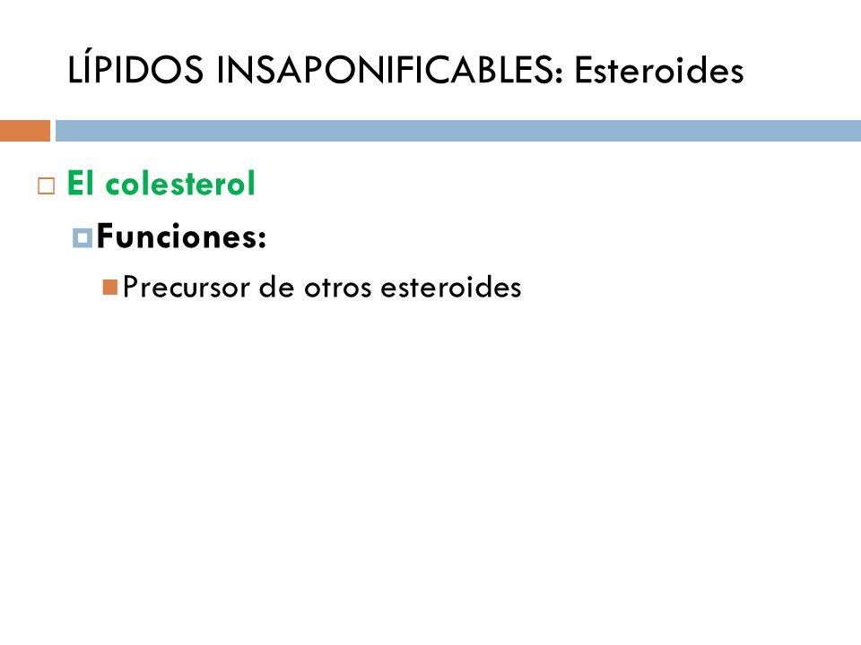 LÍPIDOS INSAPONIFICABLES: Esteroides El colesterol Funciones: Precursor de otros esteroides