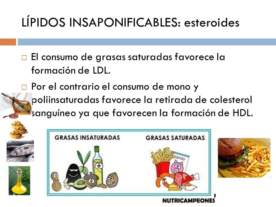 LÍPIDOS INSAPONIFICABLES: esteroides El consumo de grasas saturadas favorece la formación de LDL. Por el contrario el consumo de mono y poliinsaturada