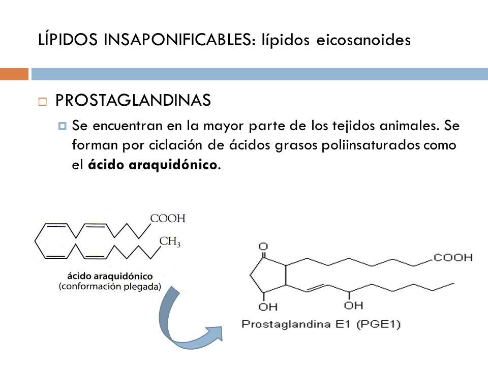 LÍPIDOS INSAPONIFICABLES: lípidos eicosanoides PROSTAGLANDINAS Se encuentran en la mayor parte de los tejidos animales. Se forman por ciclación de áci