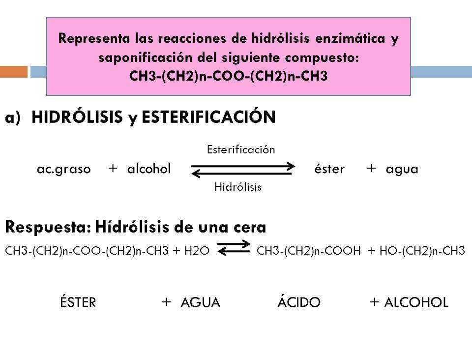 Representa las reacciones de hidrólisis enzimática y saponificación del siguiente compuesto: CH3-(CH2)n-COO-(CH2)n-CH3 a)HIDRÓLISIS y ESTERIFICACIÓN R